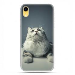 Apple iPhone XR - etui na telefon - Ciekawski szary kot